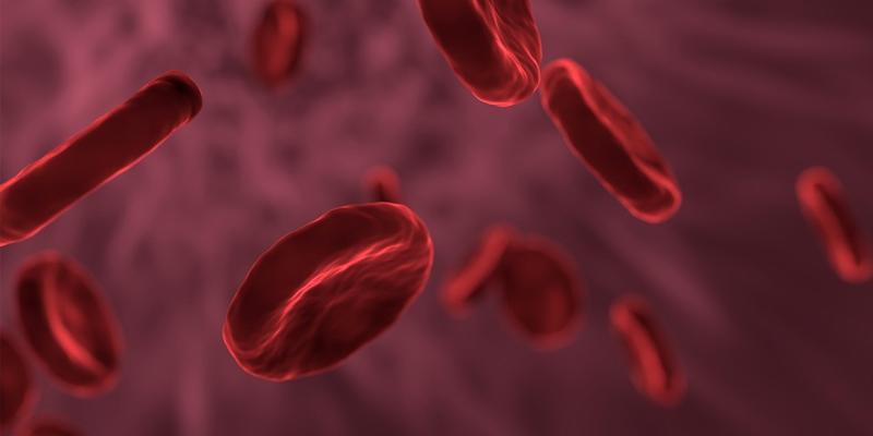 Blutbild